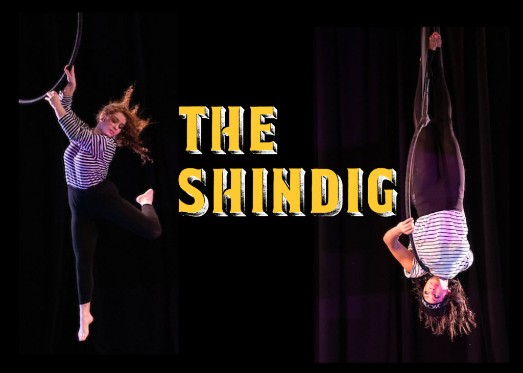 "Image is of two figures, each on their own aerial circle, or lyra, that is hanging in the air. Both figures wear b&w striped shirts and black pants. Text is ""The Shindig"""